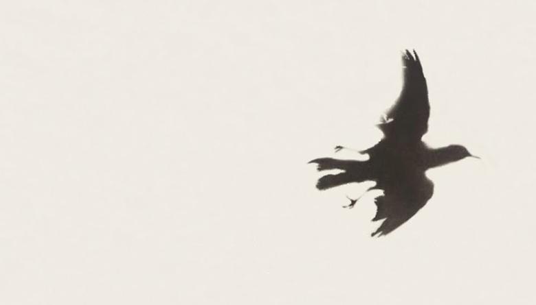 Ernesto Kavi o el rayo de la creación